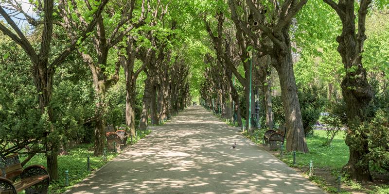 Combate stresul, plimba-te prin parc